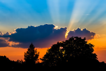 Sunset with a sun behind a silhouette of a big tree with a small tree beside and sun beams emerging from big cloud
