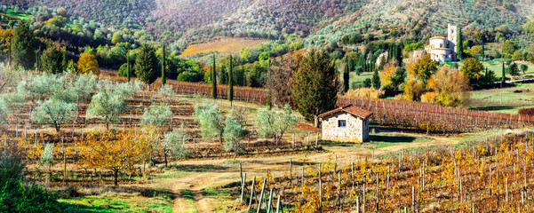 Magic autumn landscapes in Tuscany countryside. Vine region of Italy