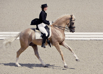 Young elegant rider woman and isabelline horse. Beautiful girl at advanced dressage test on equestrian competition. Professional female horse rider, equine theme.