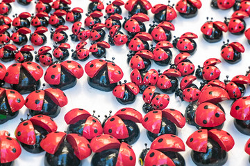Many artificial lady bug toy