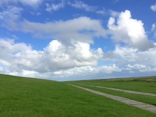 Foothpath in grassy landscape with blue sky Germany
