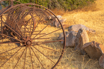 rusted metal vintage farm machinery in golden field at morning light