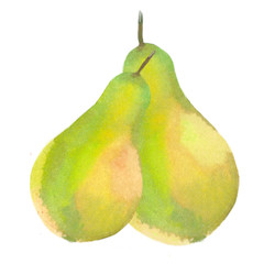 pair of pears yellow green fresh. watercolor illustration