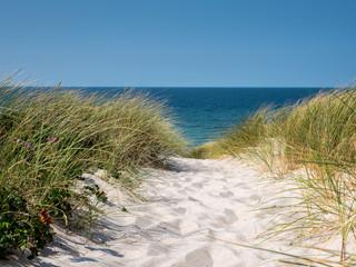 idyllischer Weg ans Meer