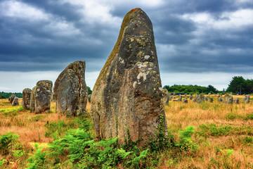 Keuken foto achterwand Europese Plekken Alignements de Carnac - Menhirs in Carnac