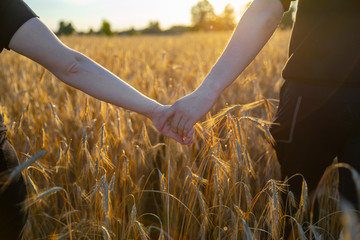 couple holding hands in a wheat field
