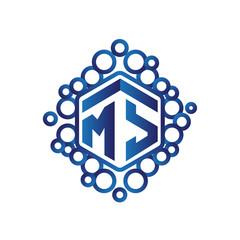 MS Initial letter hexagonal logo vector