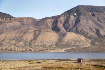 The Longyearelva River ar Longyearbyen, Svalbard.