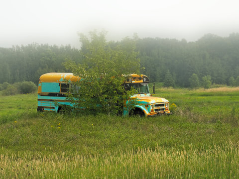 Abandoned deserted old school bus in a field