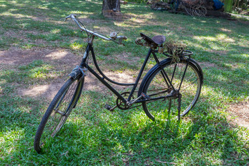 Old vintage bicycle on green grass