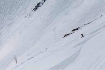 雪山を滑走するスキーヤー