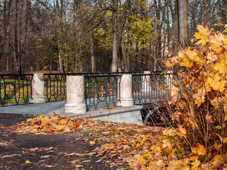 Near the bridge lie the fallen yellow leaves in the autumn in the park in sunny weather