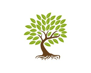 eco tree solution