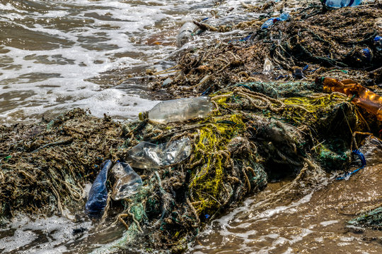 Pollution of the world's oceans with plastic litter, California