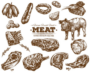 Hand drawn fresh farm meat bbq sketch