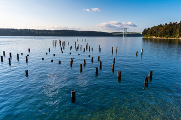 Titlow Park's waterfront, in Tacoma, Washington, features old pier pilings exposed during low tide. The Tacoma Narrows Bridge is seen in the distance.