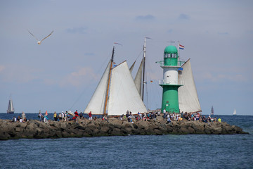 Hanse Sail, People,, Lighthouse, Seagull
