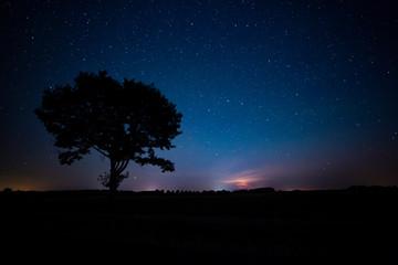 Nocne rozgwieżdżone niebo Polska kaszuby