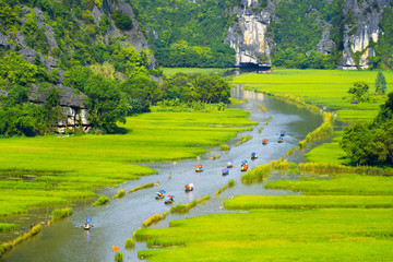 Zelfklevend Fotobehang Asia land Tourist ride boat for travel sight seeing Rice field on river