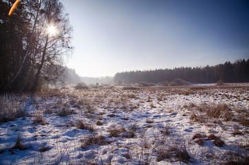 Polska zima mróz krajobraz mokradła