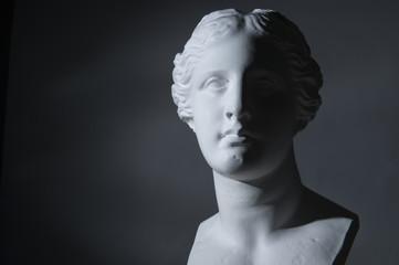 ミロのビーナスの胸像