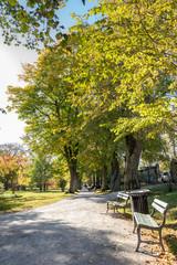 Public Victorian City Garden in North America