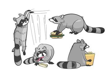 funny cartoon raccoons causing mischief