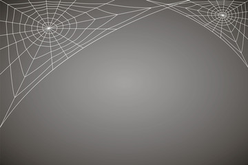 concentric white web on a gray background