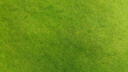 Aerial. Green grass texture background.