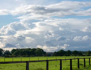 Bauernschaft mit saftigen Wiesen, Bäumen, Zaun und blauem Wolkenhimmel bei Dämmerung. Standort: Deutschland, Nordrhein - Westfalen