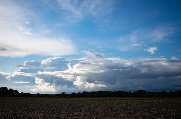 Bauernschaft mit Bäumen, Feldern und blauem Wolkenhimmel bei Dämmerung. Standort: Deutschland, Nordrhein - Westfalen