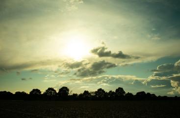 Bauernschaft im sanften Abendlicht mit Gegenlicht. Standort: Deutschland, Nordrhein - Westfalen