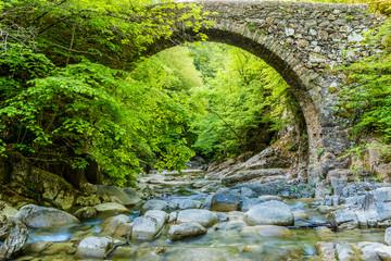 Ancient stone bridge over the river.