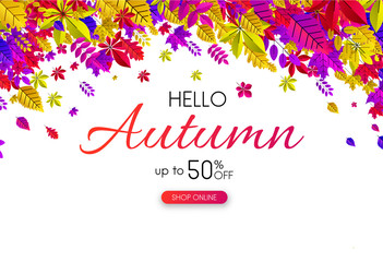 Autumn 50% sale. Promotion card with bright leaves.