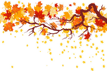 Wall Mural - Fall maple branch