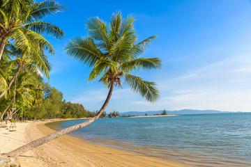 Beach on Phangan island