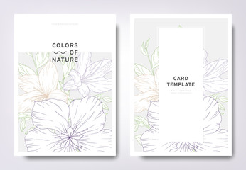 Floral greeting/invitation card template design, hand drawn Chinese rose flowers with leaves, minimalist pastel style