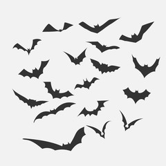 Bat vector for Halloween Content