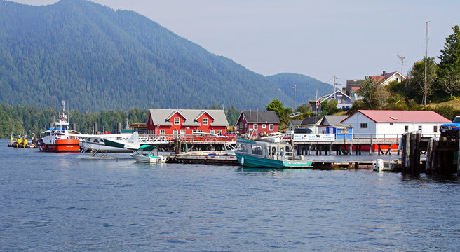 Tofino Harbour 2