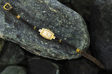 Closeup of a retro style gold colored wristwatch with worn leather straps laying on wet green stones