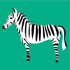 Cute vector zebra sketch for illustration alphabet