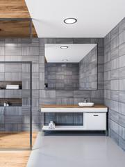 Scandinavian style gray bathroom, shower and sink