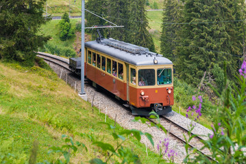 Train from one car in the Swiss Alps