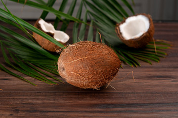 Сoconut on a palm tree background. Coconut in a cut