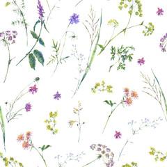 Watercolor summer wildflowers seamless pattern