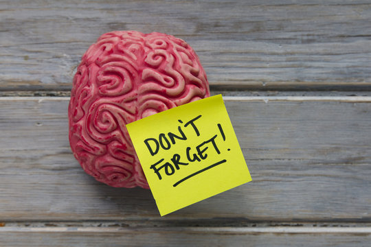 Don't forget label stuck on a brain