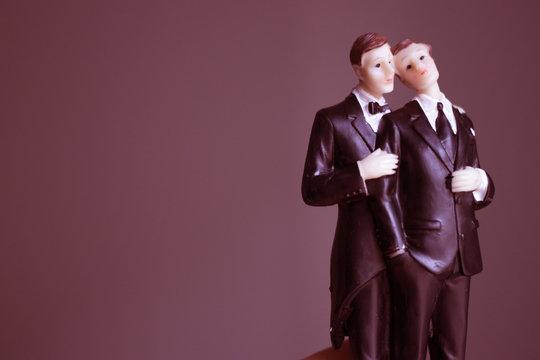Cake topper gay wedding couple