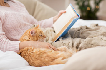 Fototapete - pets, hygge and people concept - close up of red tabby cat and female owner reading book in bed at home