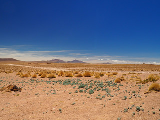 View over the Altiplano in Bolivia