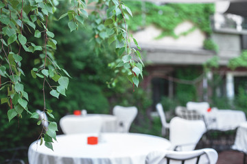 stylish cafe with white tablecloths and a background of green bushes. free tables.